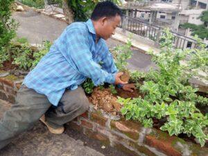 Observance of Green Mizoram Day 2021 2
